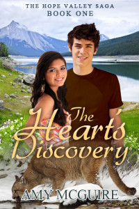 The Heart's Discovery Cover by Allan Palor